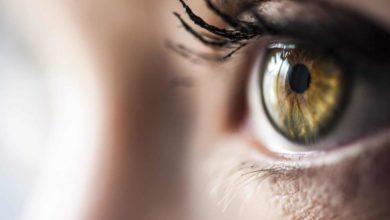 Photo of SPOTLIGHT SERIES – Ophthalmology