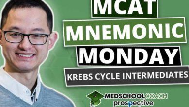 Photo of MCAT Mnemonics: Krebs Cycle Intermediates