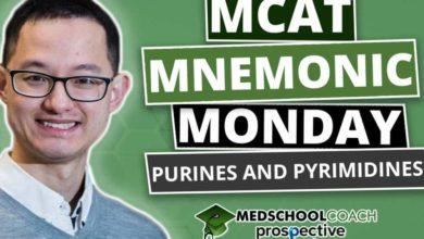 Photo of MCAT Mnemonics: Purines and Pyrimidines