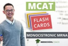 Photo of MCAT Flashcards: Monocistronic mRNA